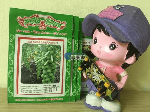 Vỏ gói hạt giống hoa bắp cải mini