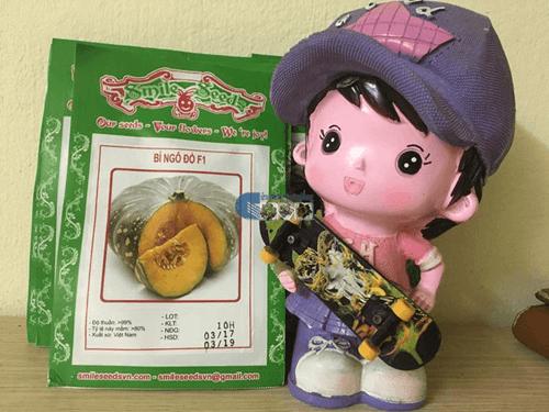 Vỏ gói hạt giống bí ngô đỏ F1 - Cửa hàng hạt giống Mỹ Đình