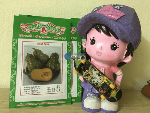 Vỏ gói hạt giống bí ngô hạt đậu - Cửa hàng hạt giống Mỹ Đình