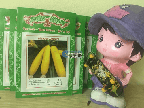 Vỏ gói hạt giống bí ngồi vàng - Cửa hàng hạt giống Mỹ Đình
