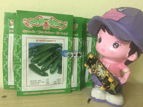 Vỏ gói hạt giống bí ngồi xanh - Cửa hàng hạt giống Mỹ Đình