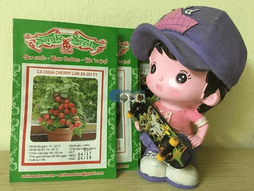 Túi hạt giống cà chua bi đỏ chùm lùn - Cửa hàng hạt giống Mỹ Đình