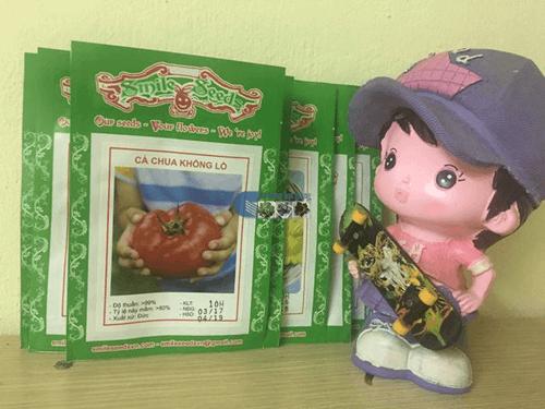Túi hạt giống cà chua khổng lồ - Cửa hàng hạt giống Mỹ Đình