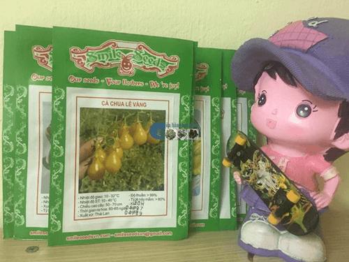 Gói hạt giống cà chua bi quả lê vàng - Cửa hàng hạt giống Mỹ Đình