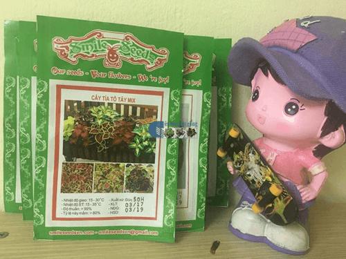 Gói hạt giống cây tía tô tây mix - Cửa hàng hạt giống Mỹ Đình
