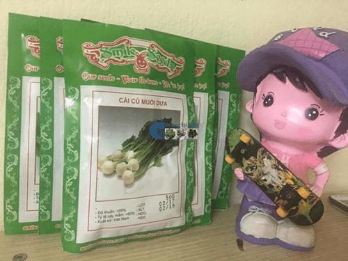 Túi hạt giống củ cải muối dưa - Cửa hàng hạt giống Mỹ Đình