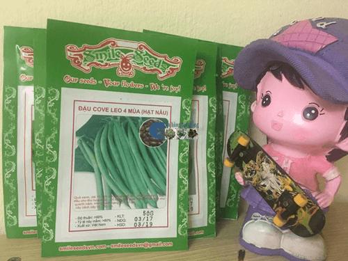 Gói hạt giống đậu cove leo 4 mùa hạt nâu - Cửa hàng hạt giống Mỹ Đình