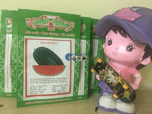 Gói hạt giống dưa hấu đỏ tại Cửa hàng