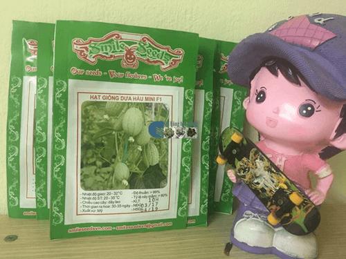 Gói hạt giống dưa hấu mini tại Cửa hàng