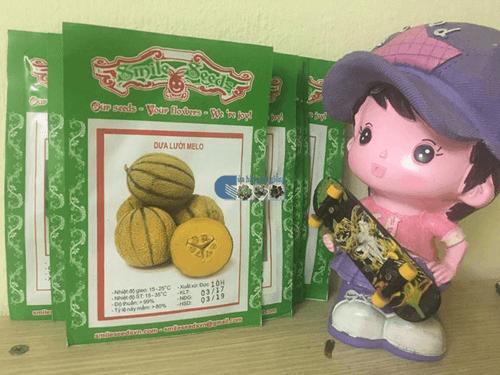 Gói hạt giống dưa lưới melo tròn - Cửa hàng hạt giống mỹ Đình
