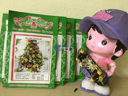 Vỏ gói hạt giống hoa ánh dương mix - Cửa hàng hạt giống Mỹ Đình