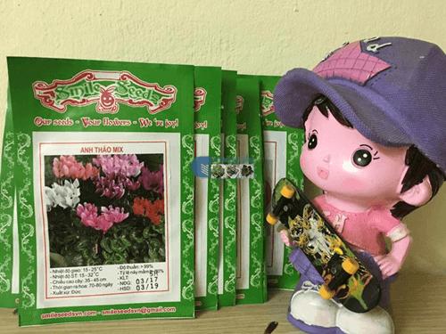 Gói hạt giống hoa anh thảo mix - Cửa hàng hạt giống Mỹ Đình