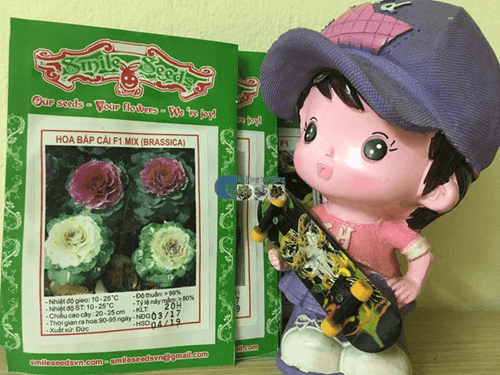 Bao bì gói hạt giống hoa bắp cải - Cửa hàng hạt giống