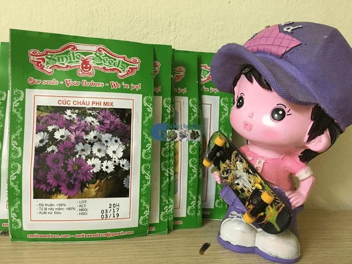 Vỏ gói hạt giống Cúc Châu phi - Cửa hàng hạt giống Mỹ Đình