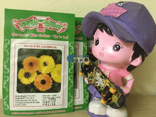 Bao bì túi hạt giống hoa cúc xu xi mix - Cửa hàng hạt giống Mỹ Đình