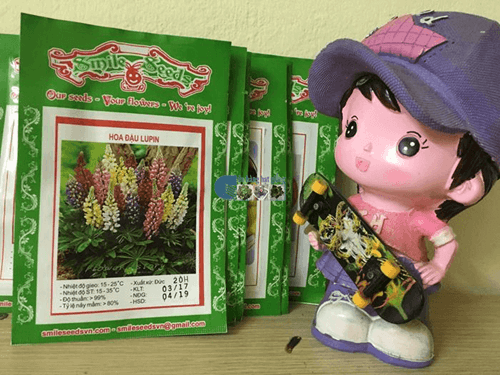 Bao bì gói hạt giống hoa đậu lupin mix - Cửa hàng hạt giống Mỹ Đình