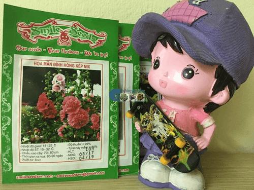Vỏ gói hạt giống hoa mãn đình hồng kép mix - Cửa hàng hạt giống Mỹ Đình