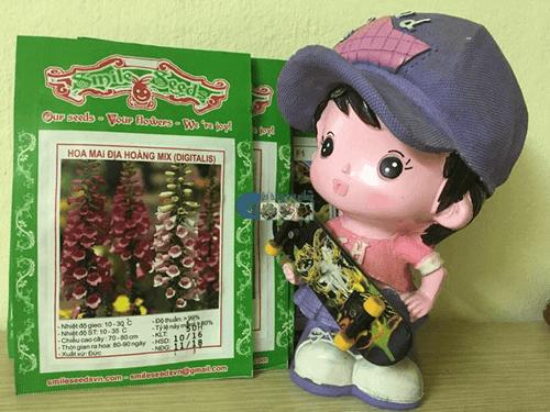 Bịch hạt giống hoa mao địa hoàng mix - Cửa hàng hạt giống Mỹ Đình