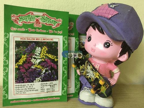 Cửa hàng hạt giống hoa salem mix
