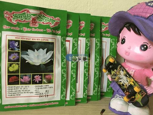Mẫu gói sen mini 8 hạt 8 màu tại Cửa hàng hạt giống Mỹ Đình