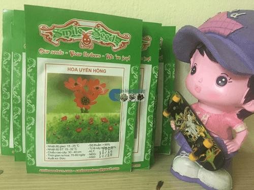 Túi hạt giống hoa uyển hồng Cửa hàng hạt giống Mỹ Đình