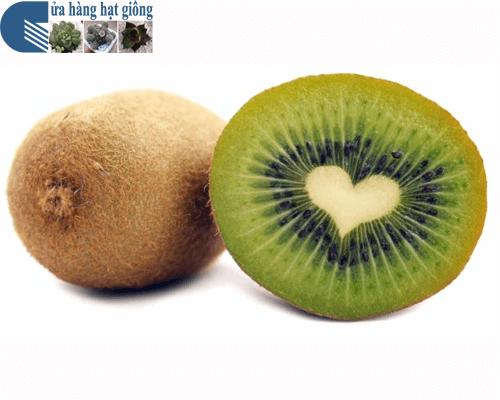 Bán hạt giống quả kiwi