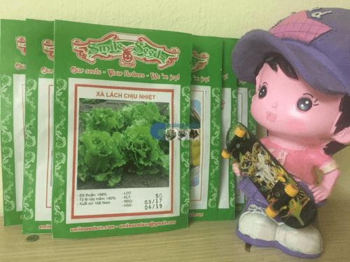Túi hạt giống xà lách chịu nhiệt - Cửa hàng hạt giống Mỹ Đình