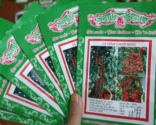 Vỏ túi hạt giống cà chua bi chuỗi ngọc