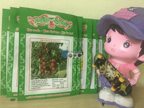 Túi hạt giống cà chua bi đỏ IDYII - Cửa hàng hạt giống Mỹ Đình