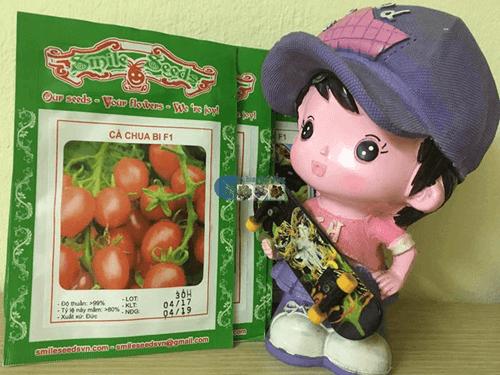 Gói hạt giống cà chua bi đỏ leo - Cửa hàng hạt giống Mỹ Đình