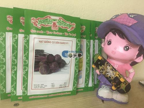 Vỏ gói hạt giống củ dền đỏ - Cửa hàng hạt giống Mỹ Đình