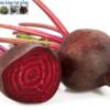 Hướng dẫn cách trồng củ dền bằng hạt giống