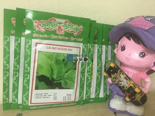 Túi hạt giống cải mơ lùn Hoàng mai 50gr