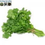 Hơn 10 loại rau thơm không thể thiếu trong bữa cơm Việt Nam