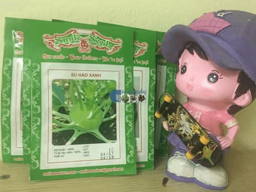Bao bì gói hạt giống su hào xanh