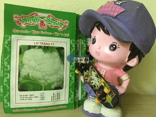 Bao bì gói hạt giống súp lơ trắng - Cửa hàng hạt giống Mỹ Đình
