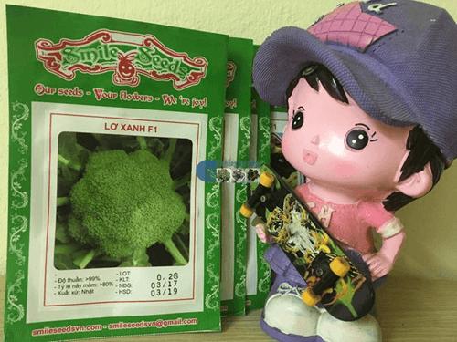 Gói hạt giống Súp lơ xanh - Cửa hàng hạt giống Mỹ Đình