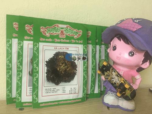 Túi hạt giống xà lách xoăn tím - Cửa hàng hạt giống Mỹ Đình